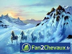 cheval :