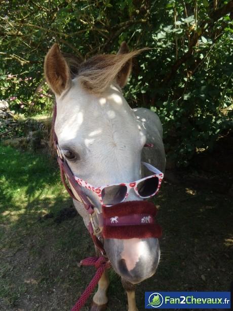 Quand mon poney fais sa star.. :