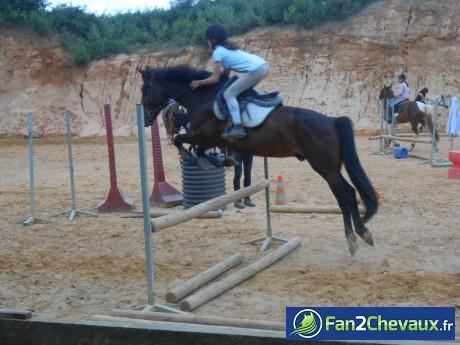 Saphir et moi ♥♥ : Poneys