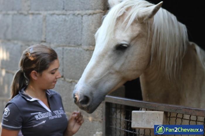Ouragan et moi : Photos du cheval des membres