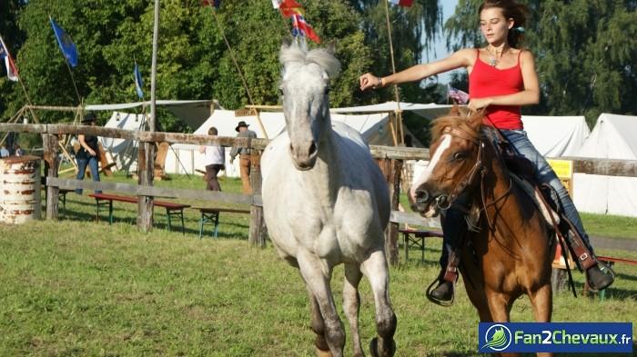 Libre comme l'air  : Photos du cheval des membres