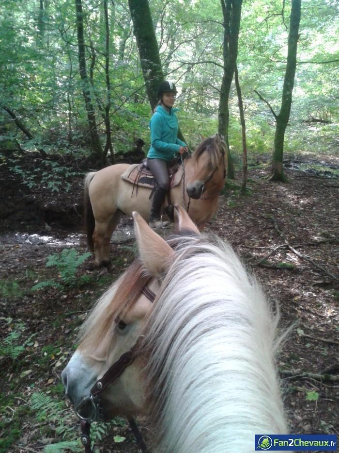 Buster à l'écoute ^^ : Photos de balades à cheval