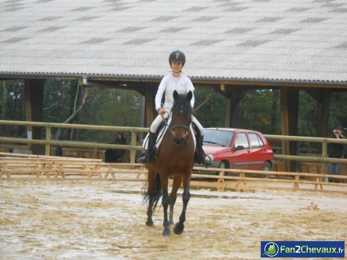 Naïade et moi ♥ : Photos du cheval des membres