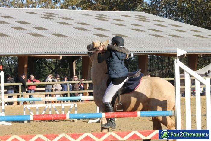 une petite chute en douceur mais que du bonheur  : Les plus belles photos de chevaux