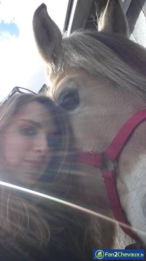 Moi et mon loulou :) : Photos du cheval des membres