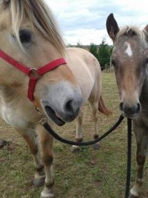 Buster et Esperanza